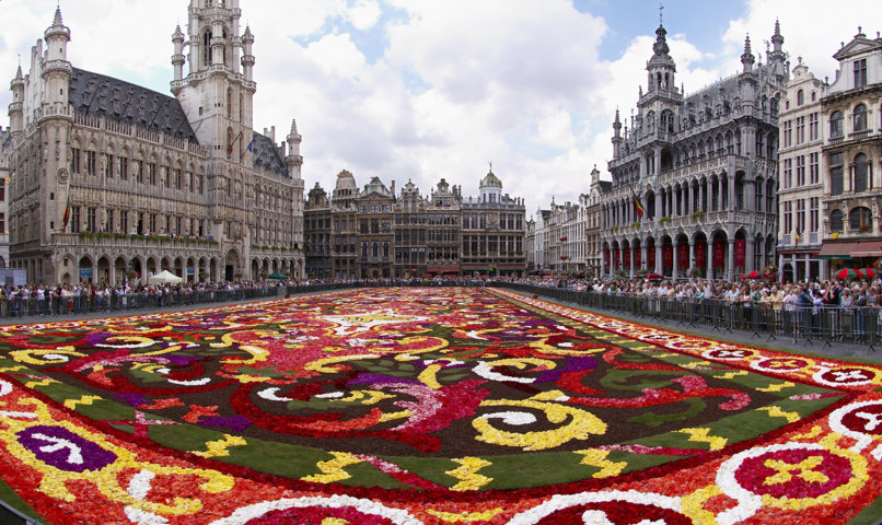 brussels_floral_carpet_b-fileminimizer