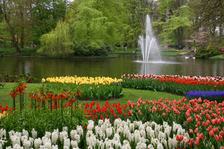 photo-3-keukenhof-fileminimizer